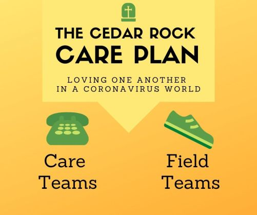 Care Plan - Infographic